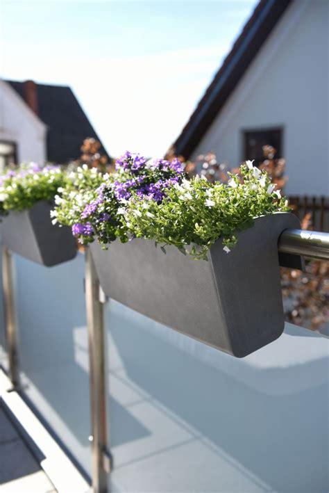 balkonkasten design balkona classico  cm bewaesserung