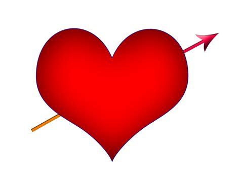 heart png images   vector png