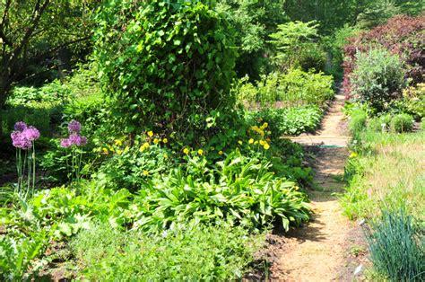 Botanischer Garten München Heilpflanzen by Heil Und Nutzpflanzen Stiftung Bremer Rhododendronpark