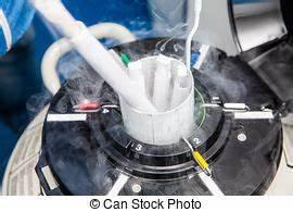 Azote Liquide Achat : images photographiques de spermatozo de 1 137 ~ Melissatoandfro.com Idées de Décoration
