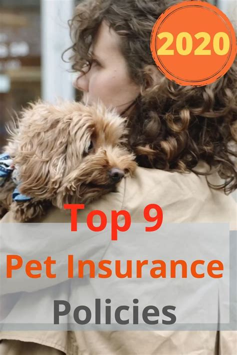 Providers that let customers customize their policies to meet their budget. Top 9 Pet Insurance Policies Of 2020 Video Video in 2020   Pet insurance, Insurance policy, Pets