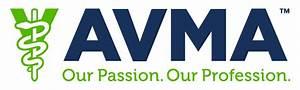 American Veterinary Medical Foundation
