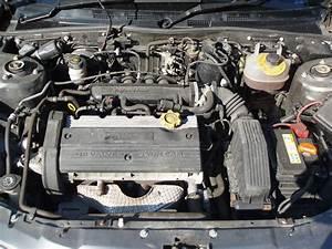 Honda Sohc  U0026 Dohc Engines