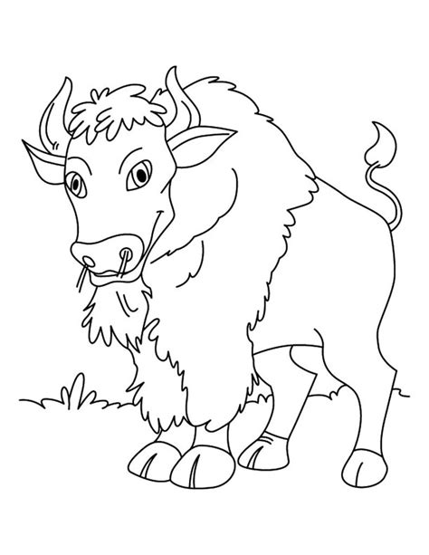 Free Coloring Sheets by Free Printable Bison Coloring Pages For