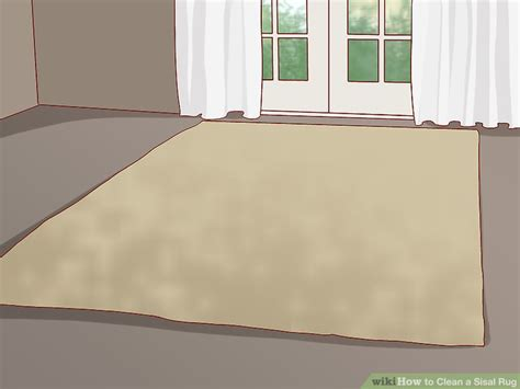 How Do You Clean A Sisal Rug by How To Clean A Sisal Rug 9 Steps With Pictures Wikihow