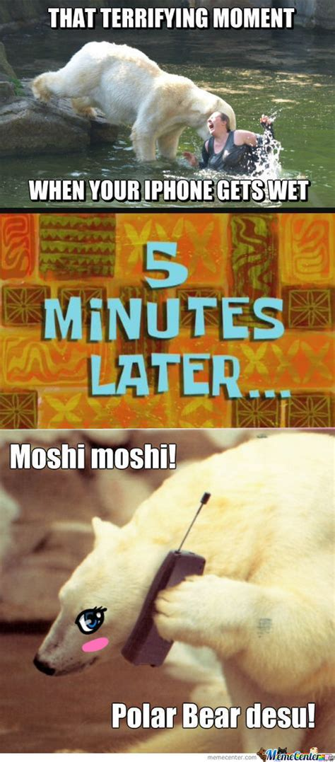 Moshi Moshi Meme - moshi moshi memes best collection of funny moshi moshi pictures