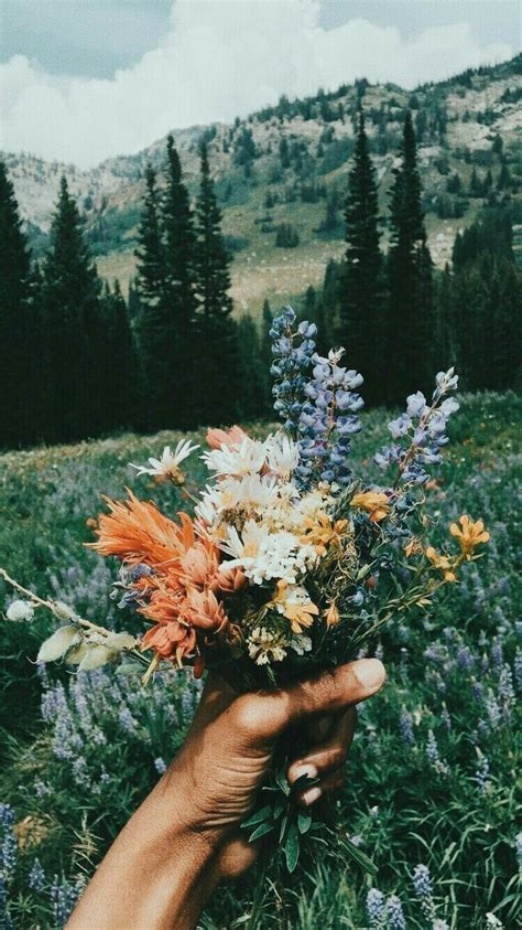 pin by liza on phone wallpaper flower aesthetic