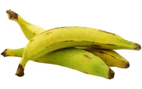 comment cuisiner des bananes plantain la banane plantain fiche légume valeurs nutritionnelles