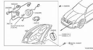 Nissan Maxima Headlight Wiring Harness