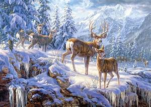 Puzzle En Ligne Adulte : cerfs dans la neige 1000 pi ces puzzle castorland ~ Dailycaller-alerts.com Idées de Décoration