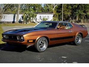 1973 Ford Mustang Mach 1 for Sale | ClassicCars.com | CC-1077419