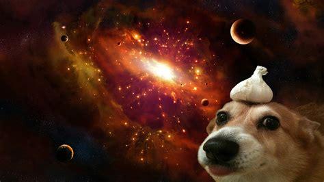Deep Space Doggo 1920x1080 Wallpapers