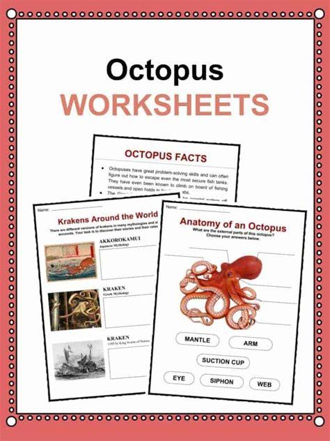 octopus facts worksheets habitat information  kids