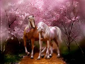Horse Series: Spring Love Two Horses Walking On A Path Of ...