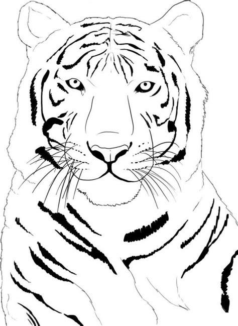 Fotos de tigre para pintar Colorear imágenes