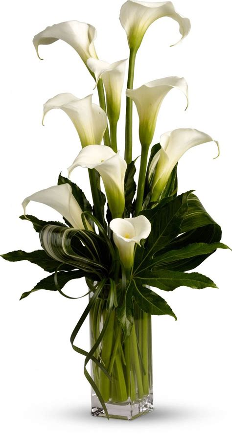 calla lily centerpieces ideas  pinterest lily