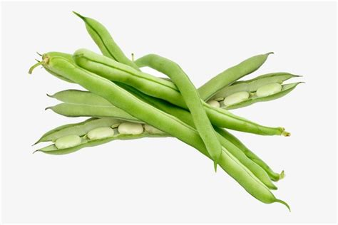 Green Beans Clipart Green Beans Vegetables Nutrition Green Png Image And