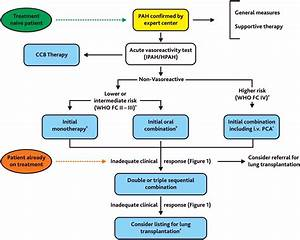 Treatment Of Children With Pulmonary Hypertension  Expert Consensus Statement On The Diagnosis