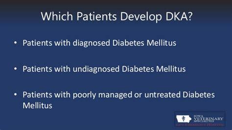 diabetic ketoacidosis  dka  cats