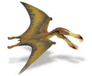 dinosaur pterosaur 7 quot wide at animal world