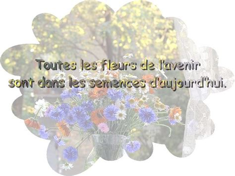 image d amitié citations belles phrases amiti 233 lovely quotes