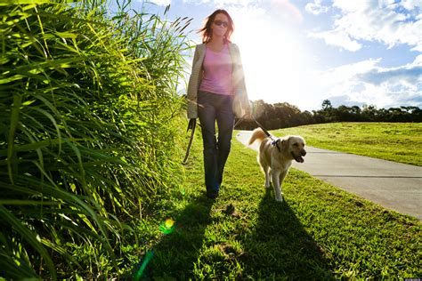 walking stress park reduce walk dog going relief take dogs woman huffpost outside national reduces help anxiety away heart