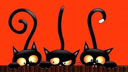 Halloween Scary Backgrounds Cat Happy Wallpapers Pixelstalk