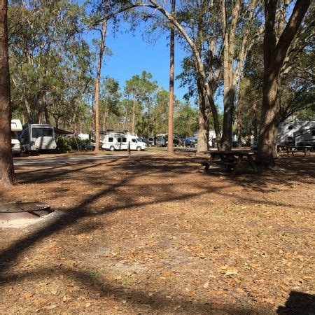 Hammocks State Park Reviews highlands hammock state park sebring 2018 all you need