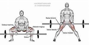 Barbell Sumo Deadlift Instructions And Video