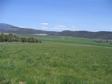 Pine Valley Farm And Garden
