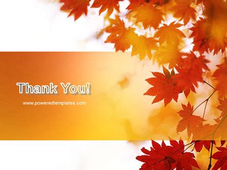 autumn season powerpoint template backgrounds