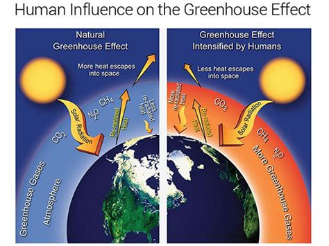 Green House Gasses by The Impact Of Greenhouse Gases