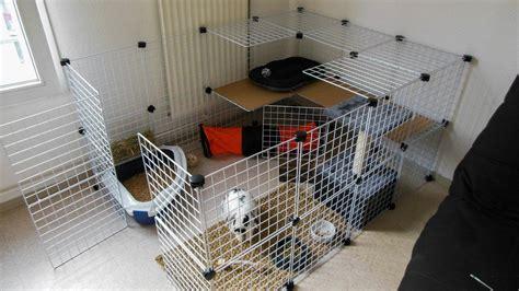 enclos interieur j adopte un lapin habitats sympa lapin lapin int 233 rieur et