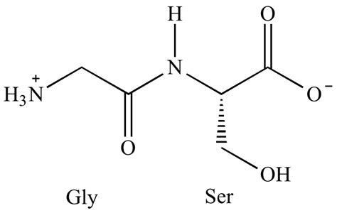 illustrated glossary of organic chemistry dipeptide