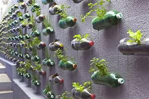 An urban vertical garden built from hundreds of recycled
