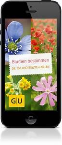 Blumen Erkennen App : blumen erkennen und bestimmen von giftigen pflanzen und ~ A.2002-acura-tl-radio.info Haus und Dekorationen