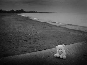 Teddy Bear Sad Quotes – WeNeedFun  Sad