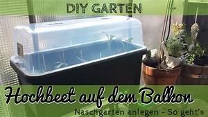hochbeet anlegen auf dem balkon urban gardening youtube With französischer balkon mit garten t shirt