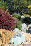 Landscaping for Drought: Inspiring Gardens That Save Water landscaping garden design ideas