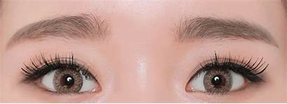 Brown Tri Geo Contacts Colored Lenses Lens