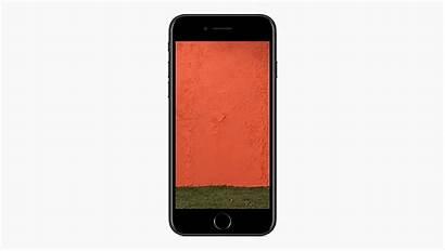 Heif Apple Iphone Ios While Need Vs