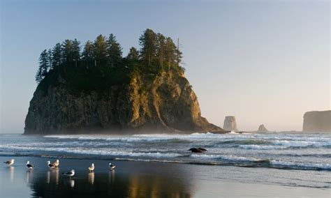 olympic port angeles park attractions tourism push peninsula beach beaches national second istockphoto