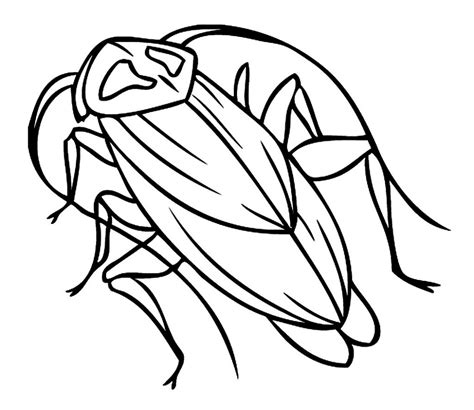 Coloring Picture For Kid by Free Printable Cockroach Coloring Pages For