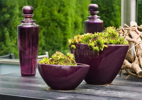 vasi e bottiglie di vetro bottiglie di vetro e vasi viola con le piante fotografia