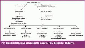 Эротон от простатита