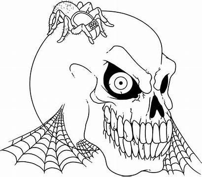 Coloring Pages Scary Skull Spider