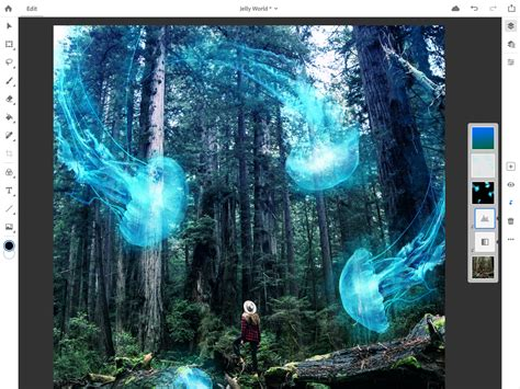 adobe announces full version  photoshop cc  ipad