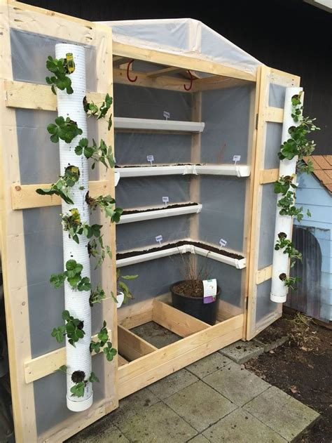 You can build this greenhouse for less than $25 and it is roomy enough to hold several plants or seedlings. 20+ Most Easy Diy PVC Ideas To Have A Garden for Small ...