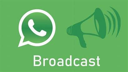 Whatsapp Broadcast Groups Difference