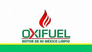 Una increíble alternativa para reducir gastos y contaminación, Oxifuel Autos Actual México